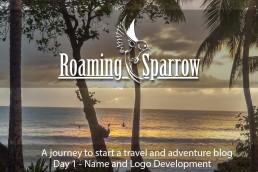Roaming Sparrow day 1
