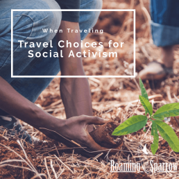 Travel Choices for Social Activism